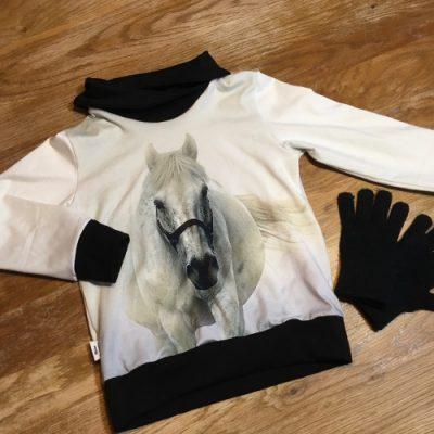 Zwart witte paardentrui met een zwarte kraag en boorden
